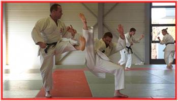 Balayage dans un kumite kata.