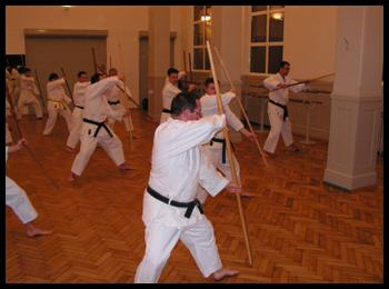 Apprentissage d'un kata de Bo, arme du kobudo, dans le Tengu-ryu.