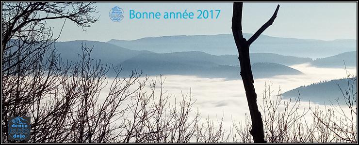 Bonne et heureuse année 2017.