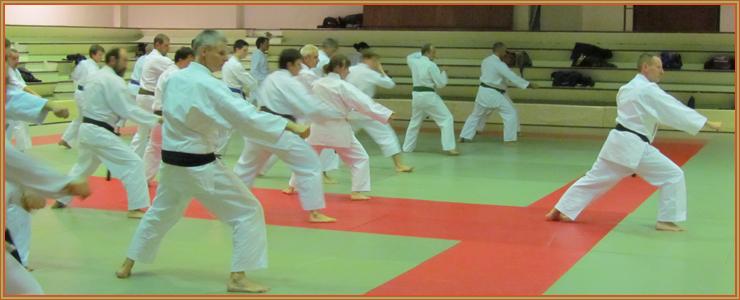 Dans une phase du kata Meikyo, Alex HAUWAERT en démonstration.
