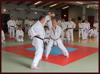 Lors d'une phase du deuxième kumité kata.