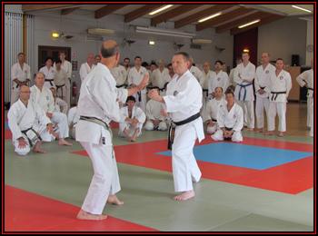Jacques et Alex en kamae en début d'un kumité kata.