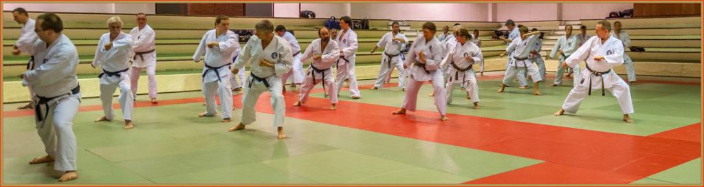 Quelques participants du stage dans une phase du kata Meikyo sous la direction d'Alex HAUWAERT, à droite sur la photo.