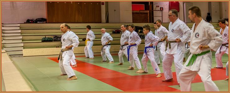Jacques FAIEFF, à gauche sur la photo, dans une phase du début du kata Meikyo devant le groupe.