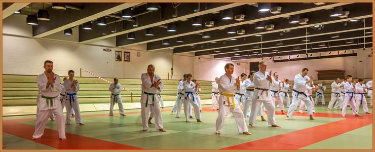 Les stagiaires dans l'exécution de tengu-no-kamae, une garde spécifique à notre école, le Tengu-Ryu.