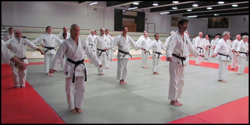 Phase initiale du kata Unsu du Shotokan.