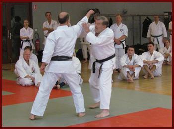 Jacques et O-Sensei recevant une attaque en oi-zuki jodan mais d'une façon différente de celui dont on est habitué en shotokan.