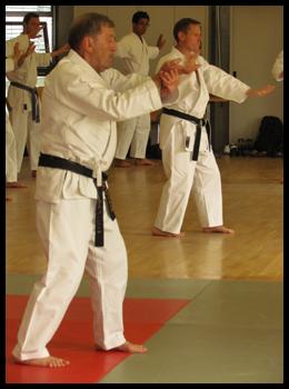 ou seul dans une phase du kata Sochin du Shorin ryu.
