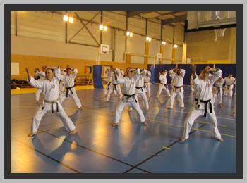 Au premier plan à gauche, Jacques Faieff, dans une phase du kata shotokan JION