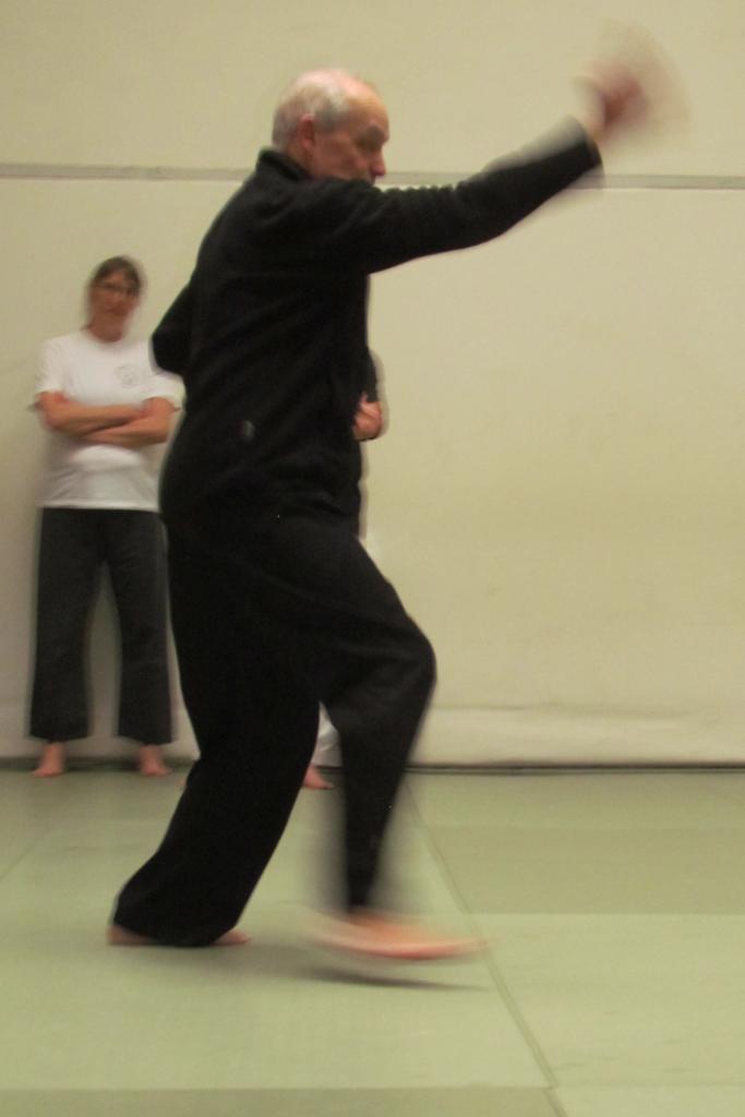 Pierre PORTOCARRERO en mouvement lors d'une série du Bagua zang.